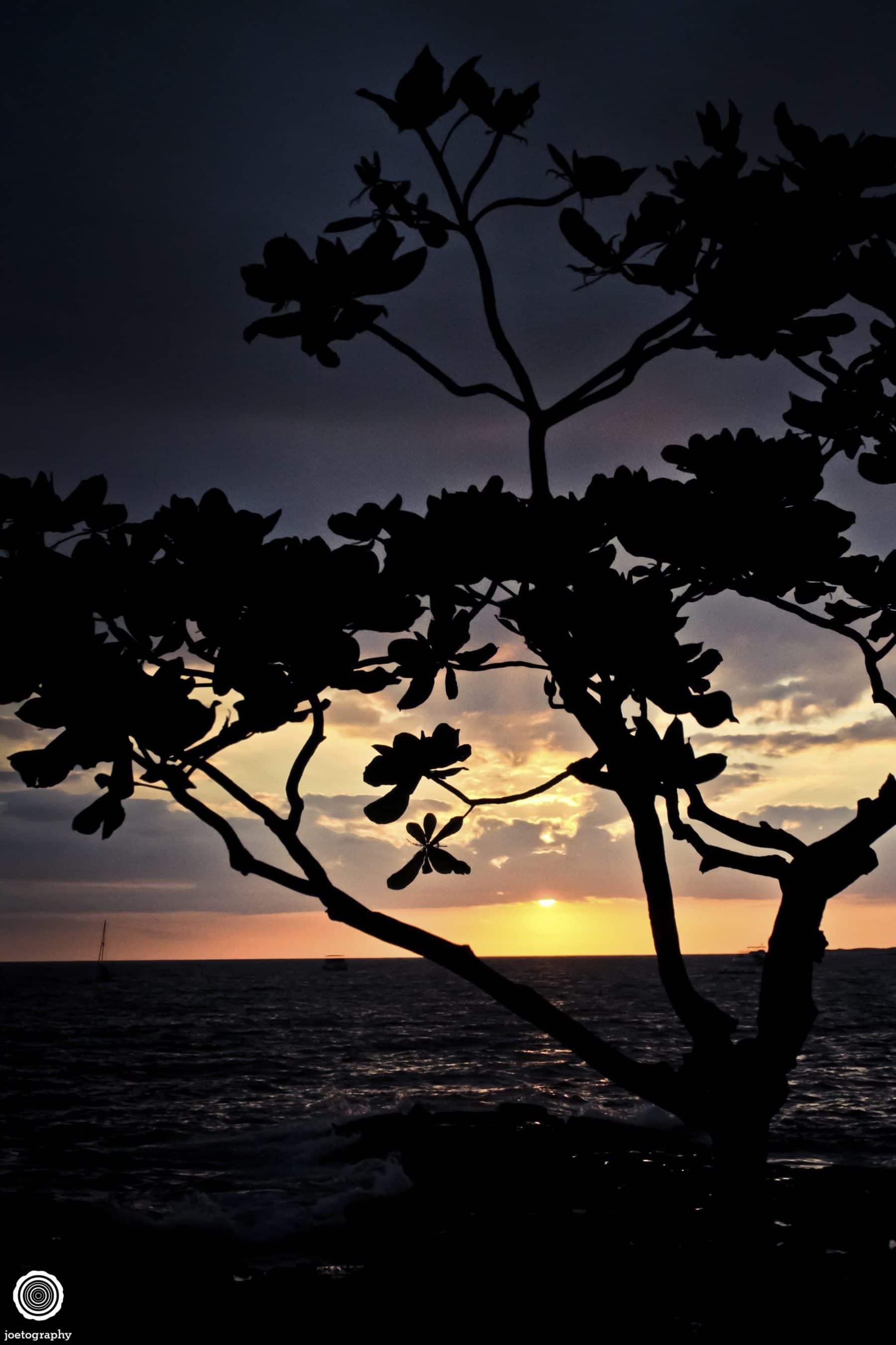 Hawaii-Big-Island-Travel-Photography-2011-24