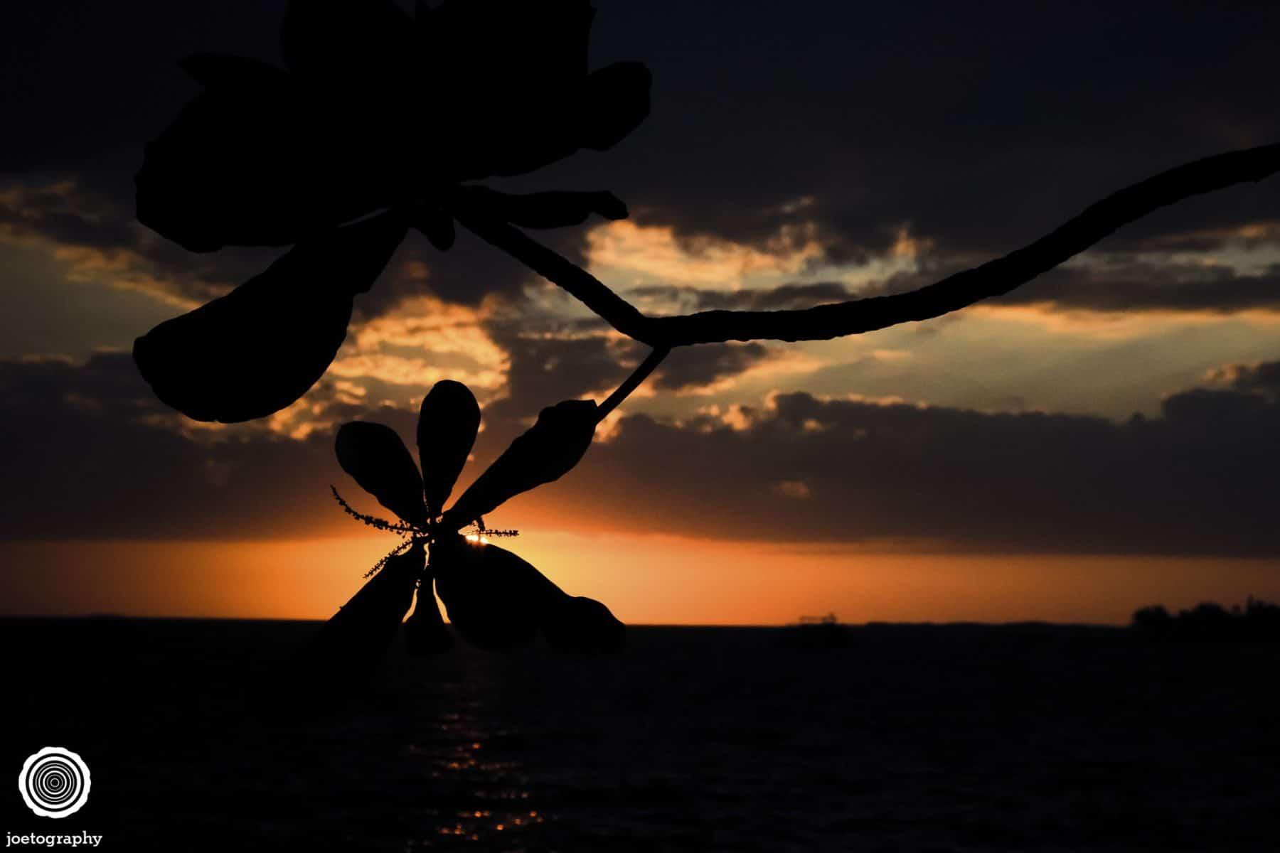 Hawaii-Big-Island-Travel-Photography-2011-25