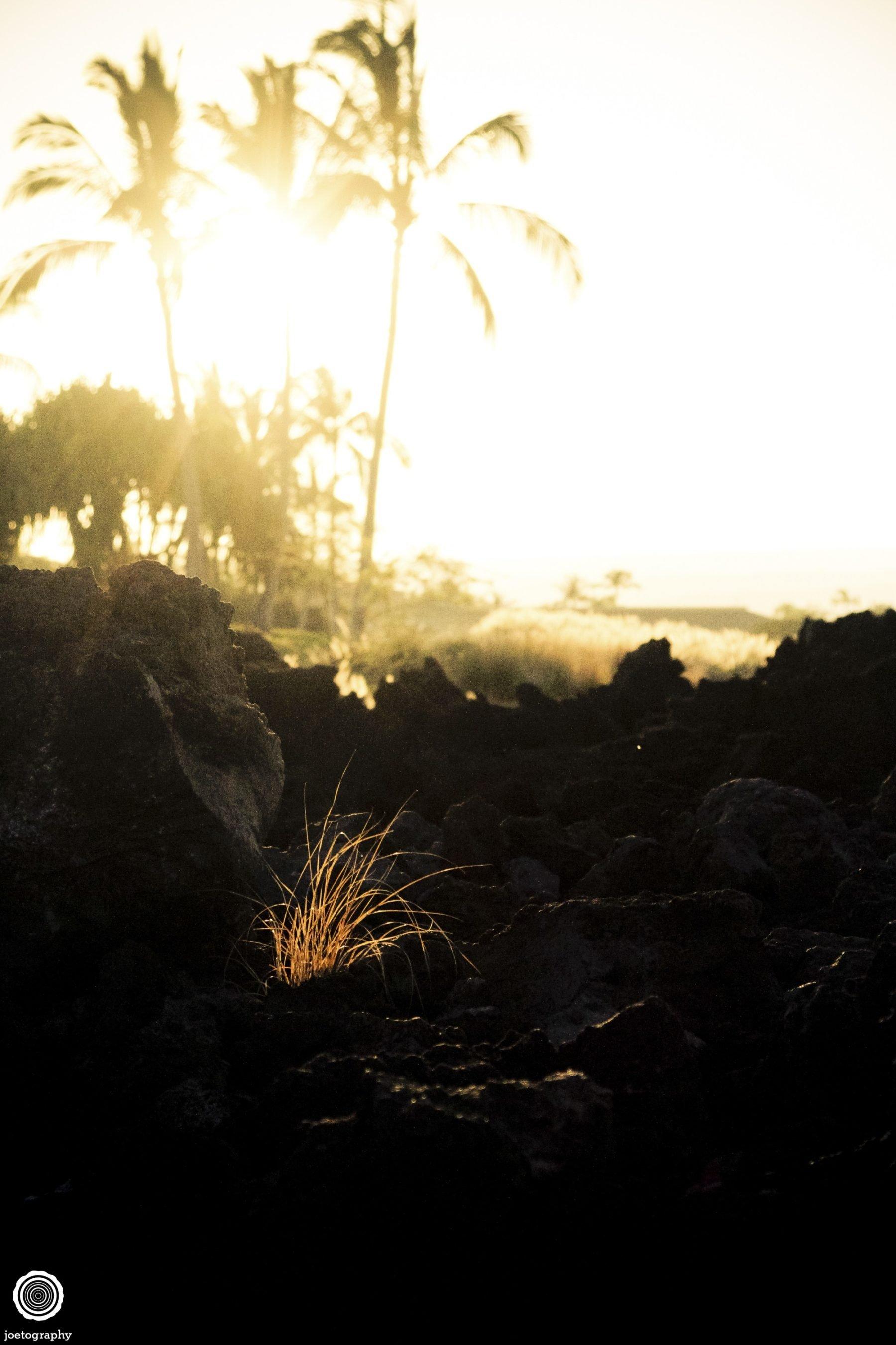 Hawaii-Big-Island-Travel-Photography-2011-8