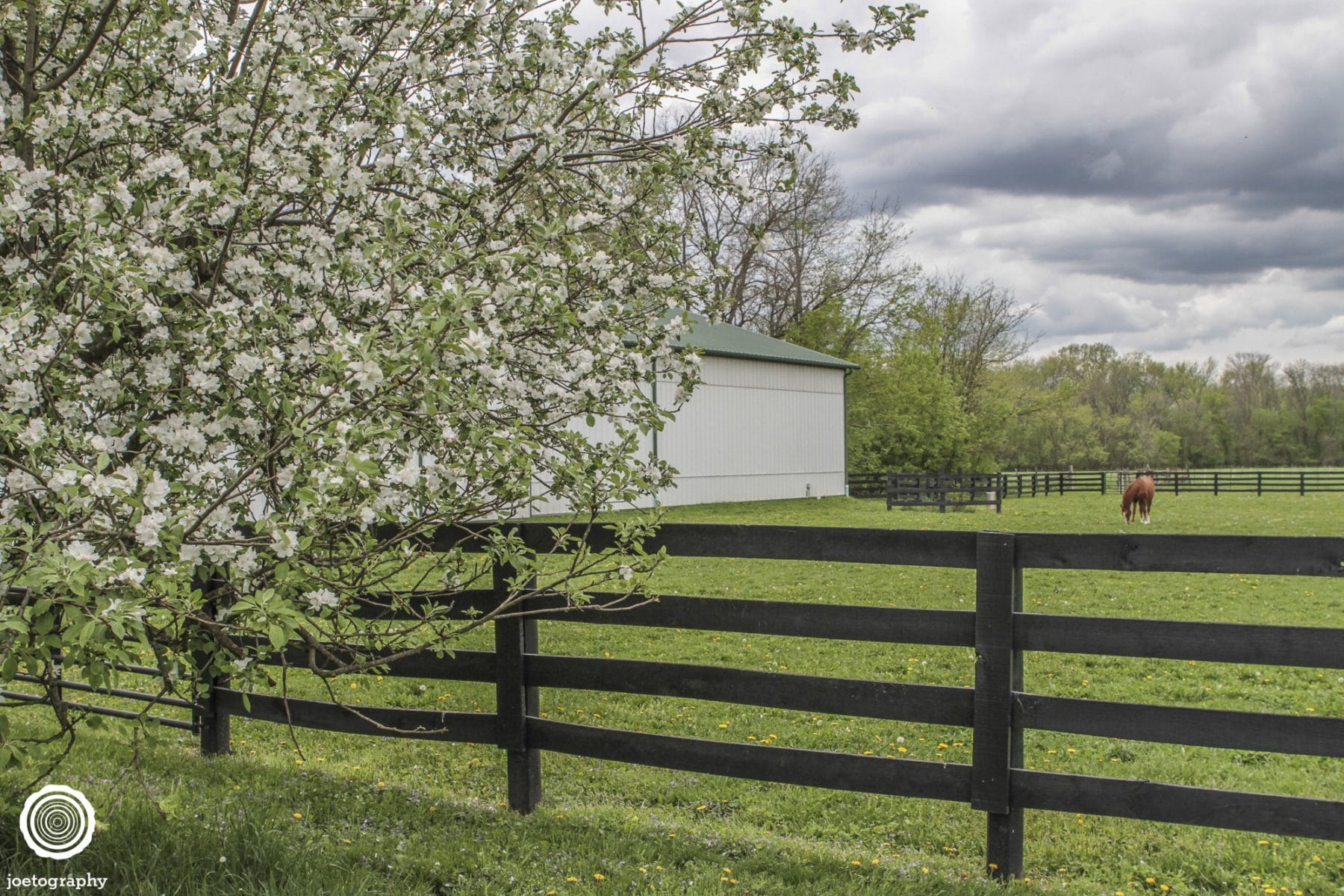 architectural-real-estate-photography-fishers-indiana-2