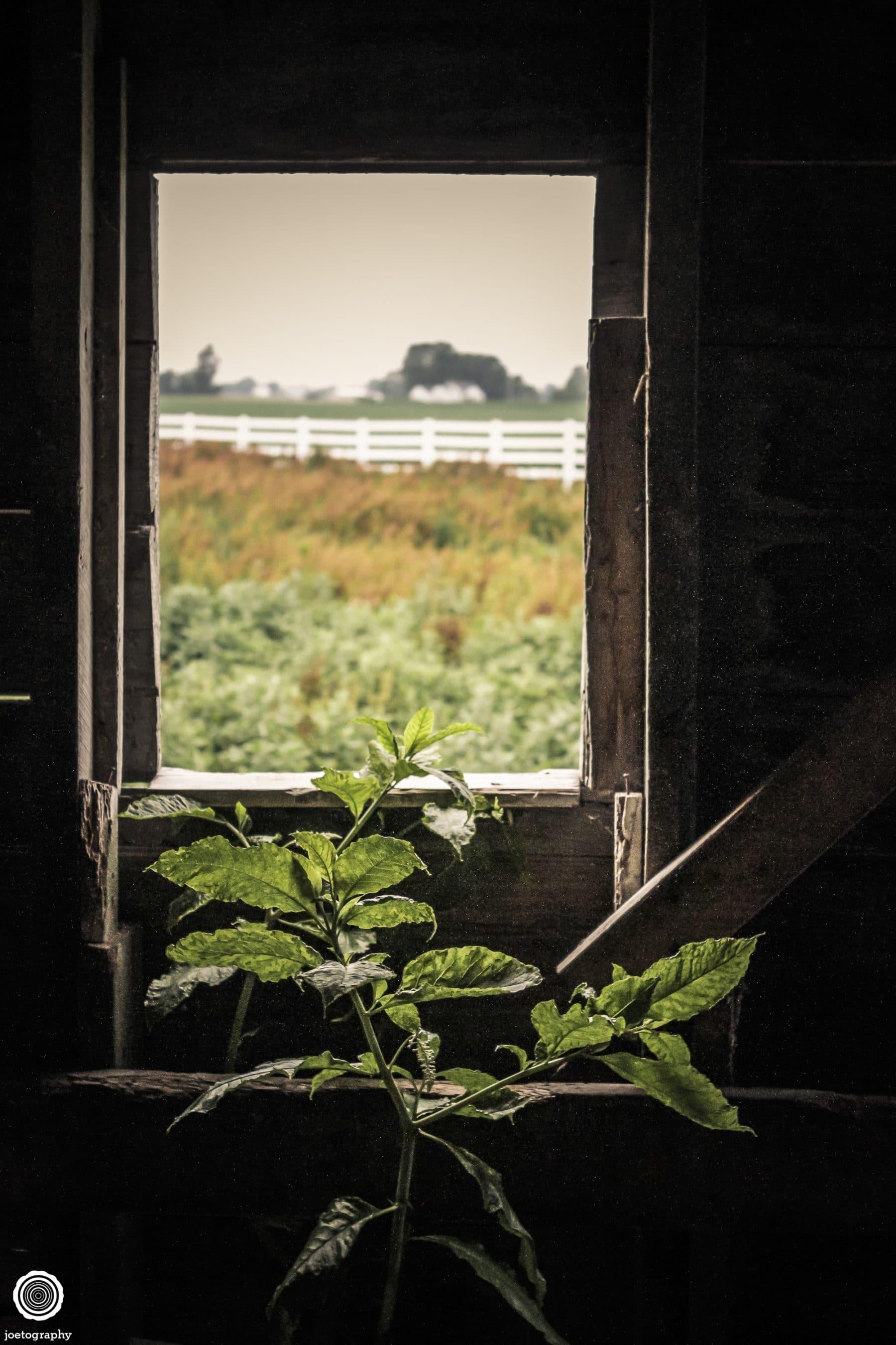 polygonal-barn-architecture-photos-shelbyville-indiana-16