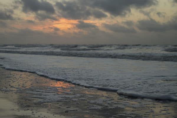 Nature-Photography-Hilton-Head-Island-6