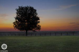 joetography-travel-photography-bourbon-country-kentucky-2014-22