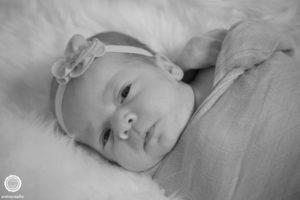 gemma-ruetz-newborn-photos-broad-ripple-59