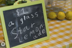 lemonade-day-2015-stand-contest-event-photography-indianapolis-13