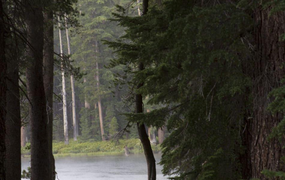 rain-is-grace-yosemite-travel-photography