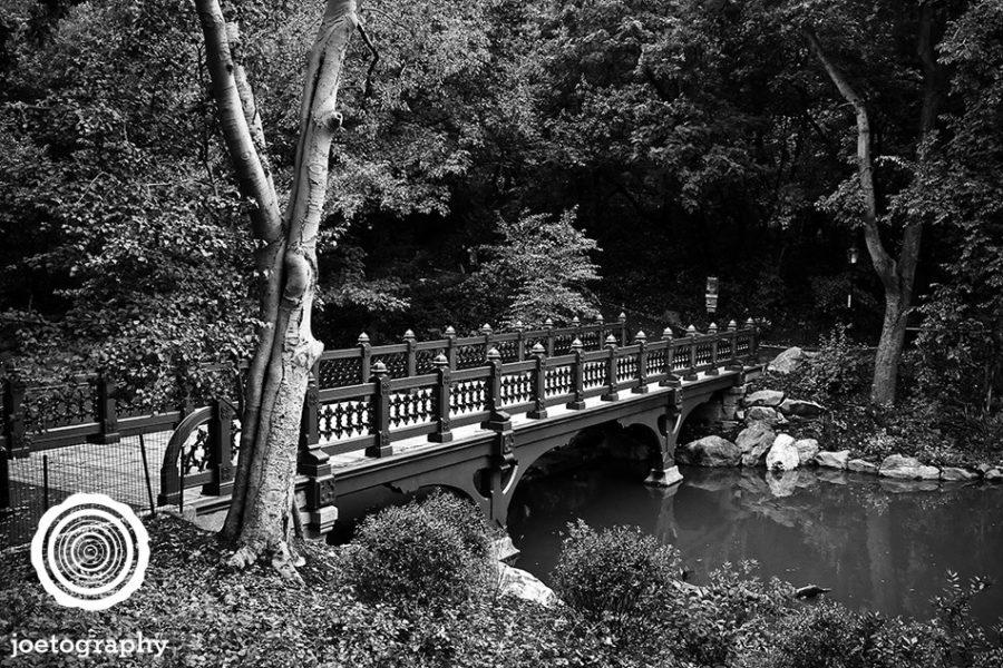 Bank_Rock_Bridge