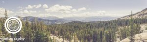 Wilderness_Call
