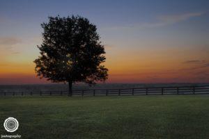 joetography-travel-photography-bourbon-country-kentucky-2014-19