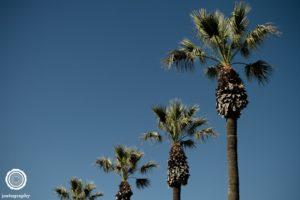 joetography-travel-photography-san-diego-california-2014-17