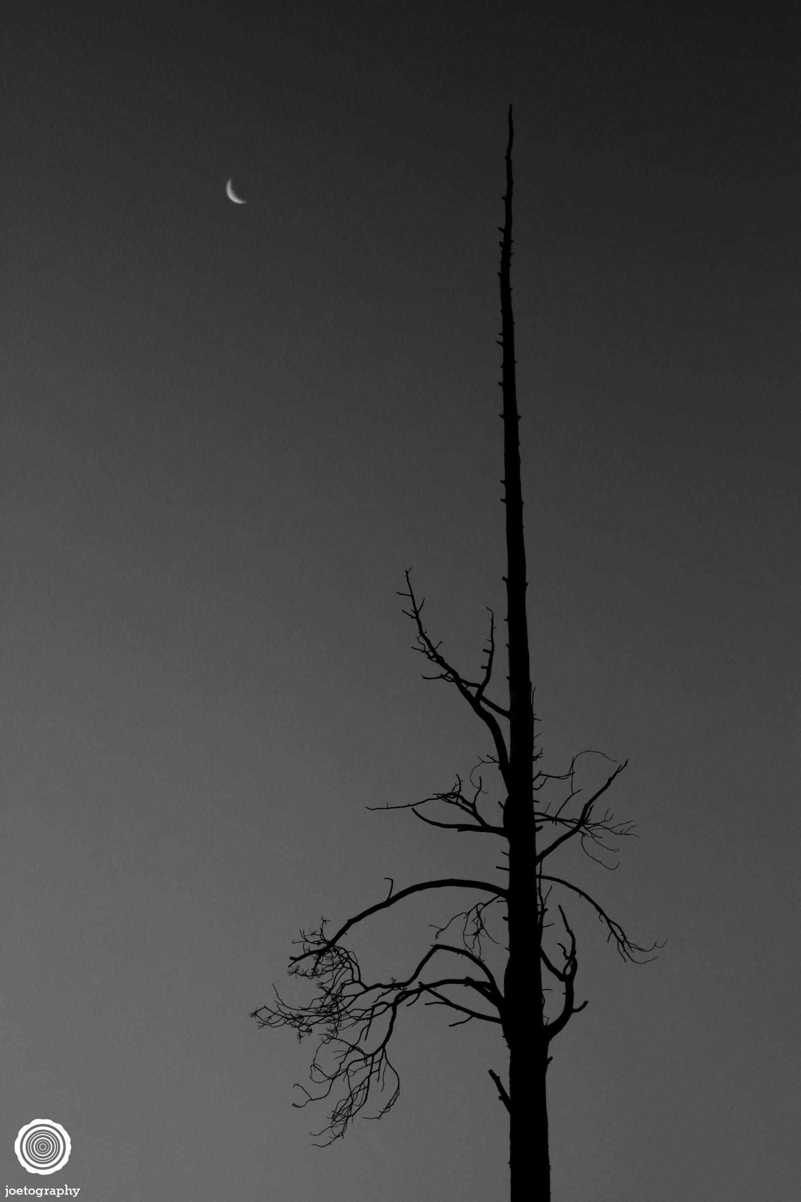 joetography-travel-photography-yosemite-2015-31