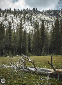 joetography-travel-photography-yosemite-2015-78