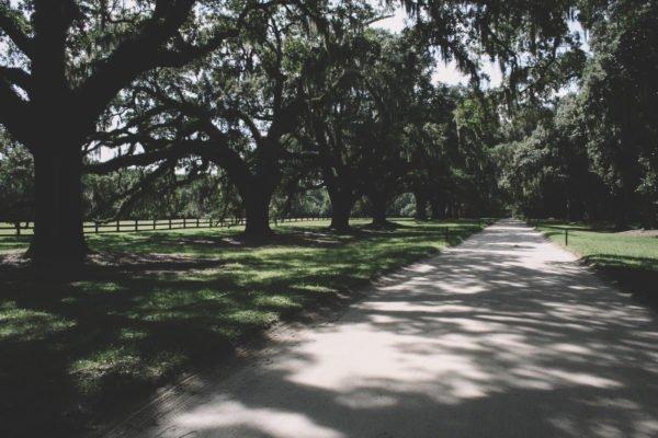 Charleston-South-Carolina-Travel-Photography-2009-79
