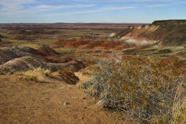 Southwest-Roadtrip-Travel-Photography-California-Arizona-New Mexico-Colorado-19