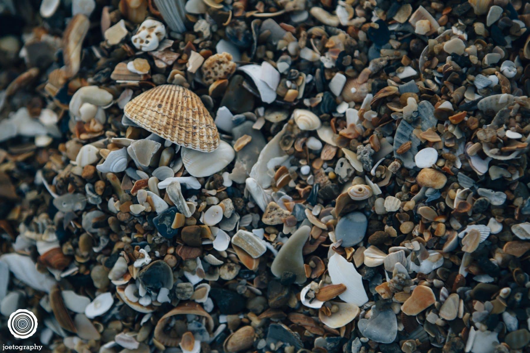 Outer-Banks-North-Carolina-Travel-Photography-43