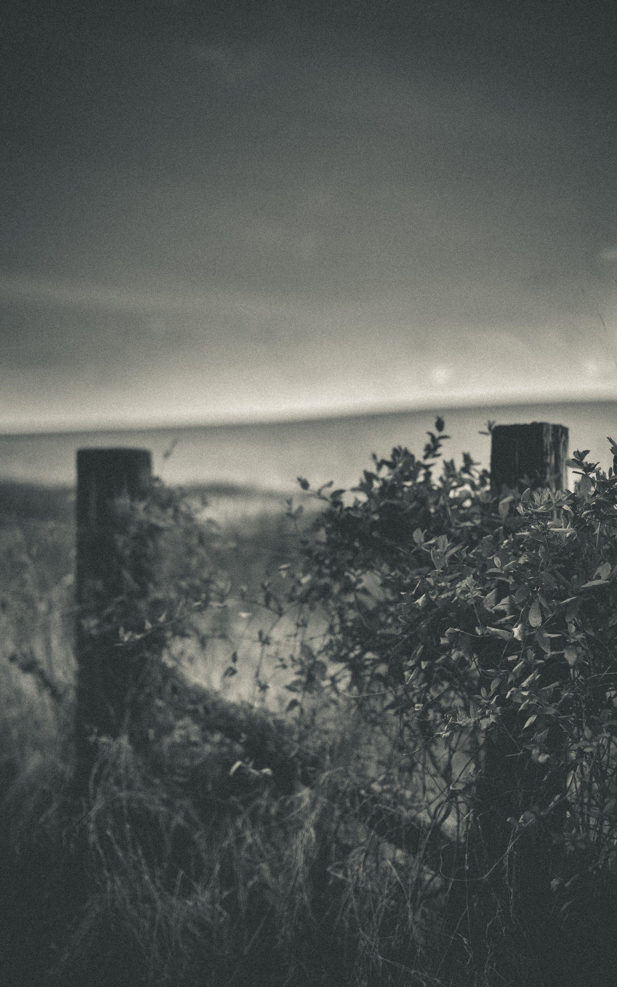 landscape-photography-indianapolis-nashville-2017-21