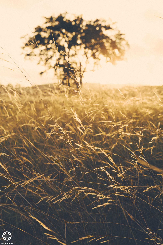 laity-lodge-san-antonio-texas-landscape-photographer-indianapolis-10