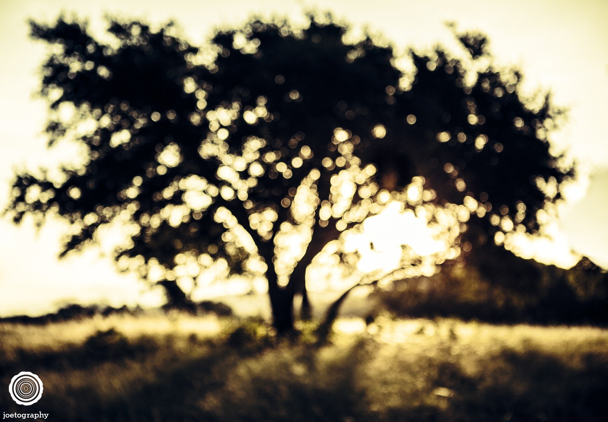 laity-lodge-san-antonio-texas-landscape-photographer-indianapolis-25