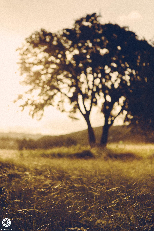 laity-lodge-san-antonio-texas-landscape-photographer-indianapolis-27