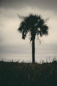 pawleys-island-south-carolina-landscape-photographer-indianapolis-8